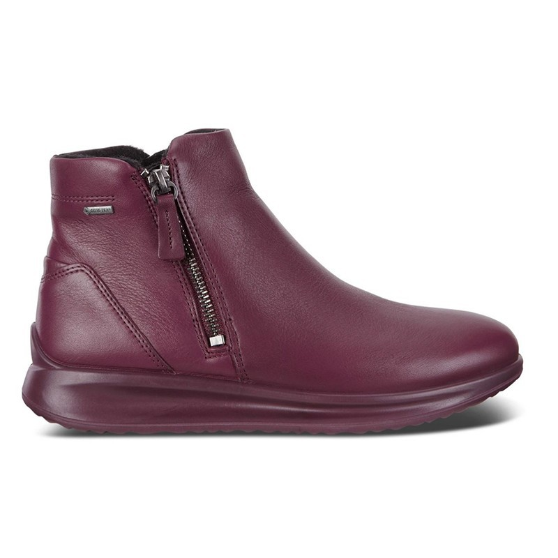 ECCO Women's ankle boots model AQUET art. 20708301278 - GORE-TEX shopping online Naturalshoes.it